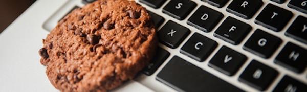 Cookies Belehrung